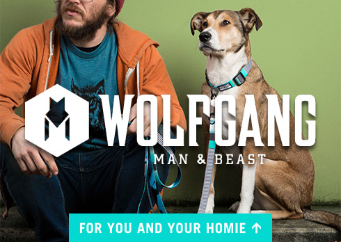 Wolfgang Dog Collars