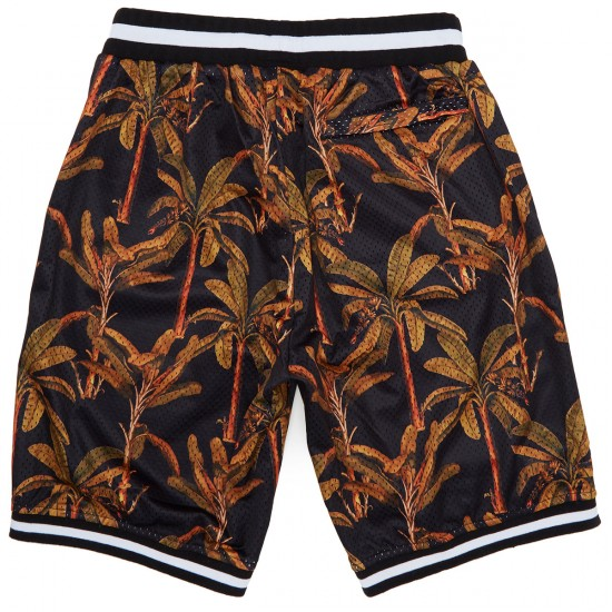 40s And Shorties Palms Basketball Shorts - Multi/Black