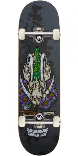 Birdhouse Shrine Skateboard Complete - David Loy - 8.3875