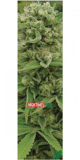 Mob High Times Magazine Legends Ultimate Skateboard Griptape