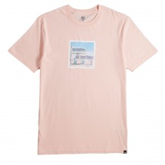 DC Viajero T-Shirt - English Rose