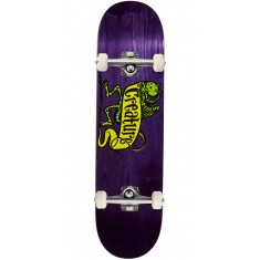 Creature Imp Hard Rock Maple Skateboard Complete - 8.25
