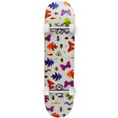 Habitat Insecta Skateboard Complete - 7.875""