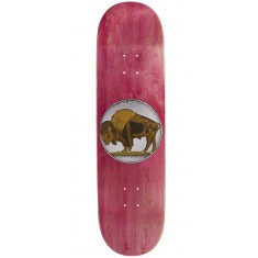 Toy Machine Provost Bison Skateboard Deck - 8.50""