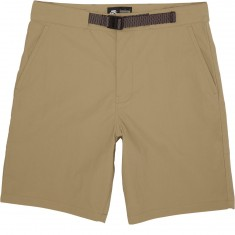 Nike SB Flex Everett Shorts - Khaki