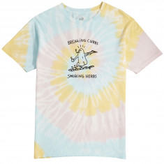 Lakai Breaking Curbs T-Shirt - Rainbow