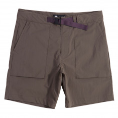 Nike SB Flex Everett Shorts - Ridgerock/Black