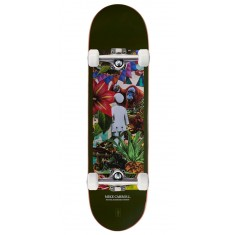 Girl Jungle Skateboard Complete - Carroll - 8.375""