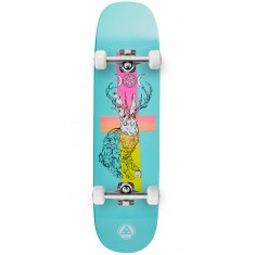 Welcome Jack Magick on Phoenix Skateboard Complete - Teal Dip - 8.0