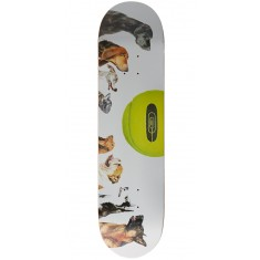 CCS Ball Is Life Skateboard Deck