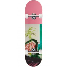 CCS No Enemy Skateboard Complete