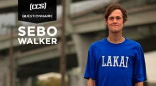 CCS Questionnaire with Sebo Walker